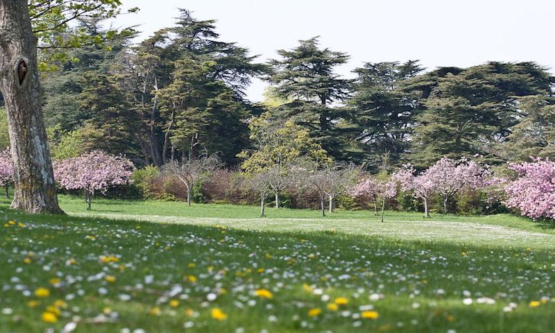 Stanmer Park, Brighton, Boundary Brighton