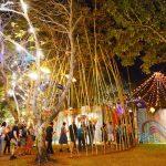 Darwin Festival, Festival Park