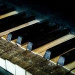 Ivory piano keys, CITES resolution 16.8