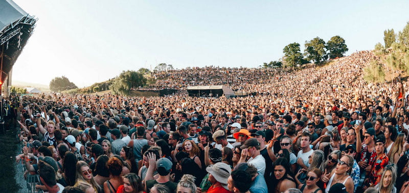 Rhythm and Vines is New Zealand's biggest music festival