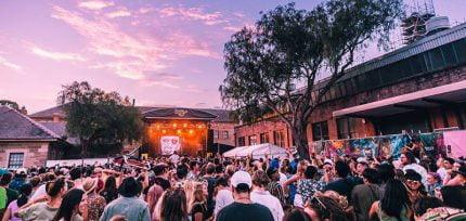 NSW higher risk festivals
