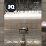 Covid essentials: IQ 91 out now